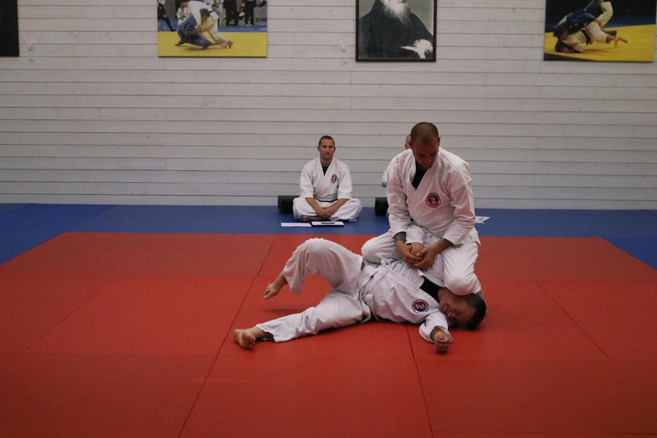 Hapkido hosinsul Jeilkwan