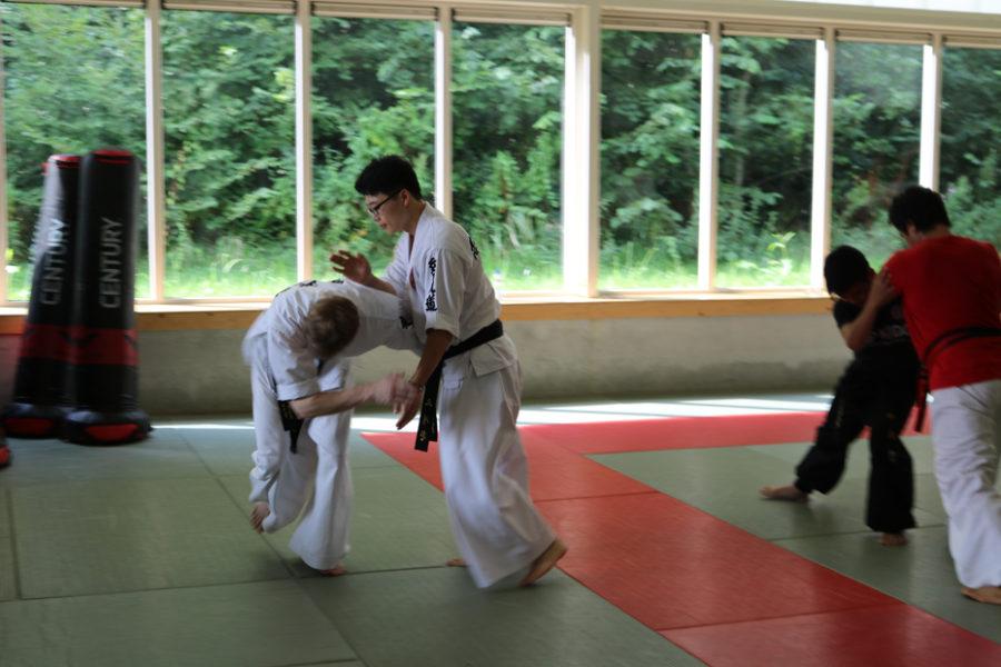 Hapkido Zomerkamp 2017
