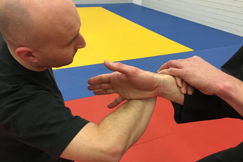 Pencak silat meets Hapkido